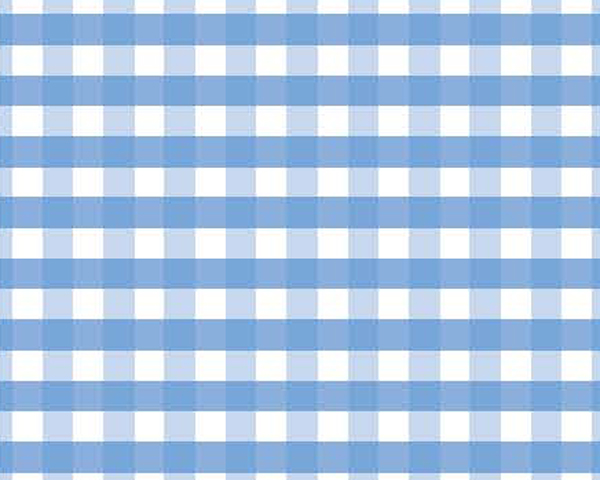 huckleberry gingham gingham